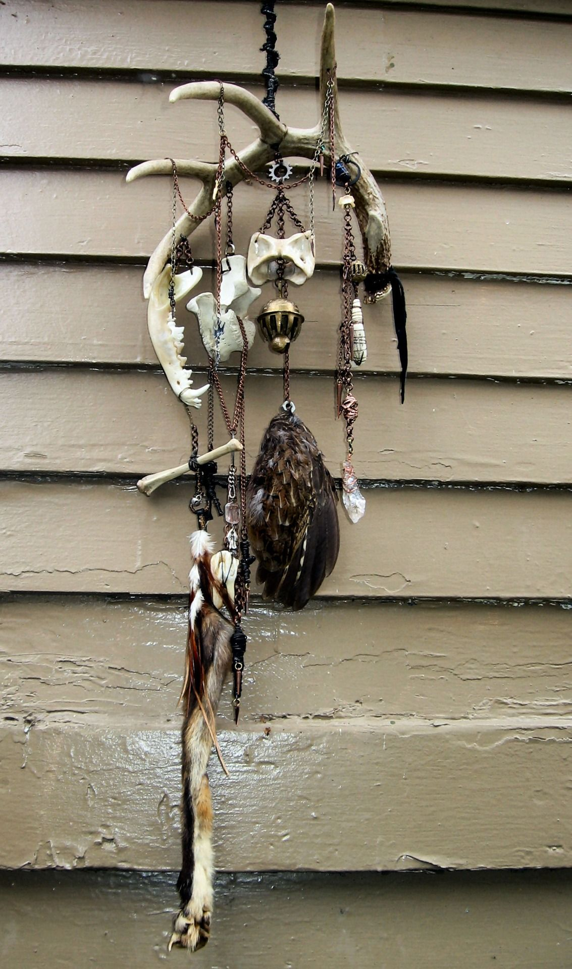 Earth Dancer Wind Chime Coyote Jaw, Cat Bone, Fox Foot w
