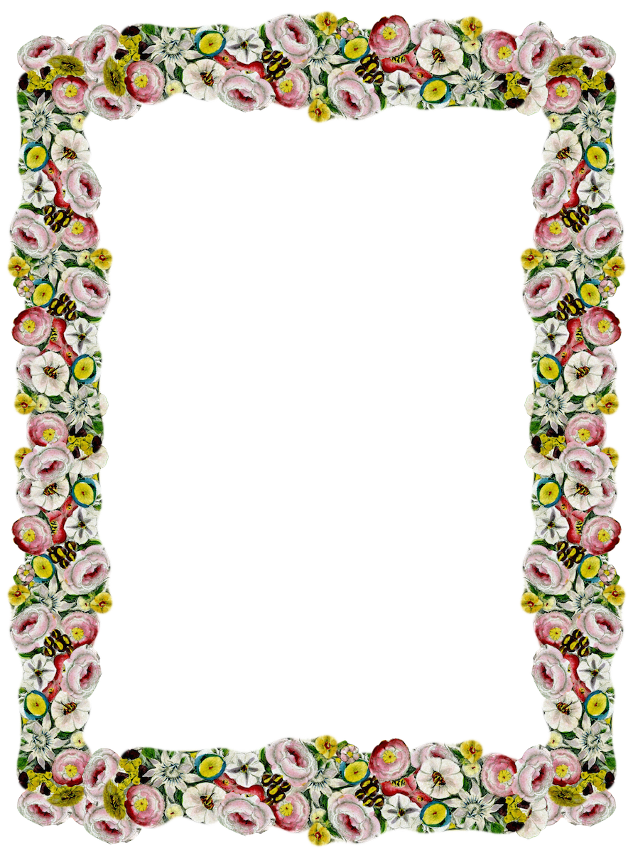 FREE digital vintage flower frame and border png with transparent ...