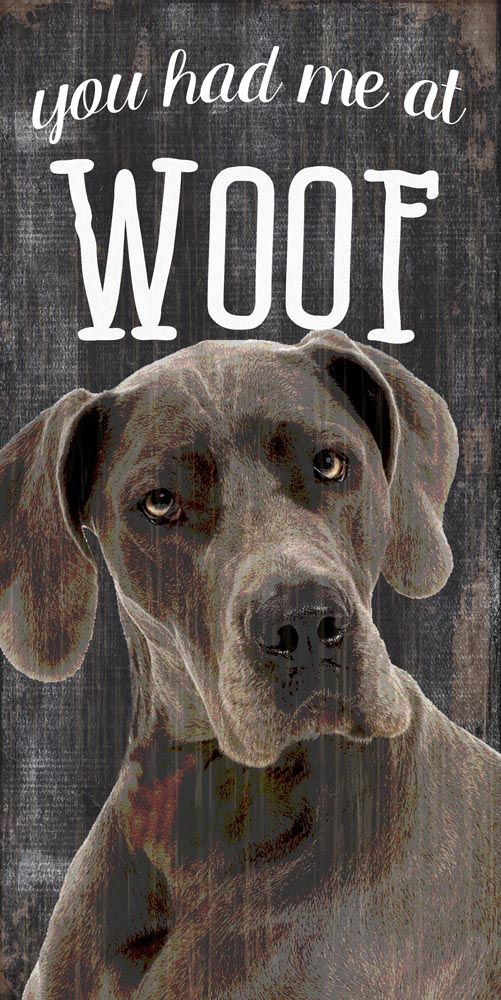 Great Dane Sign You Had Me At Woof 5x10 Great Dane Dogs Pets
