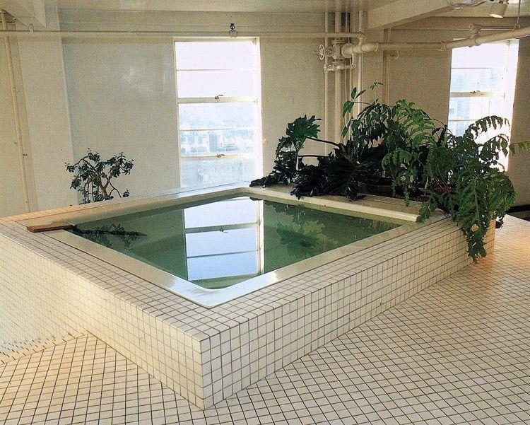 Postmodern 80s Interior Tiles Jacuzzi Houseplants