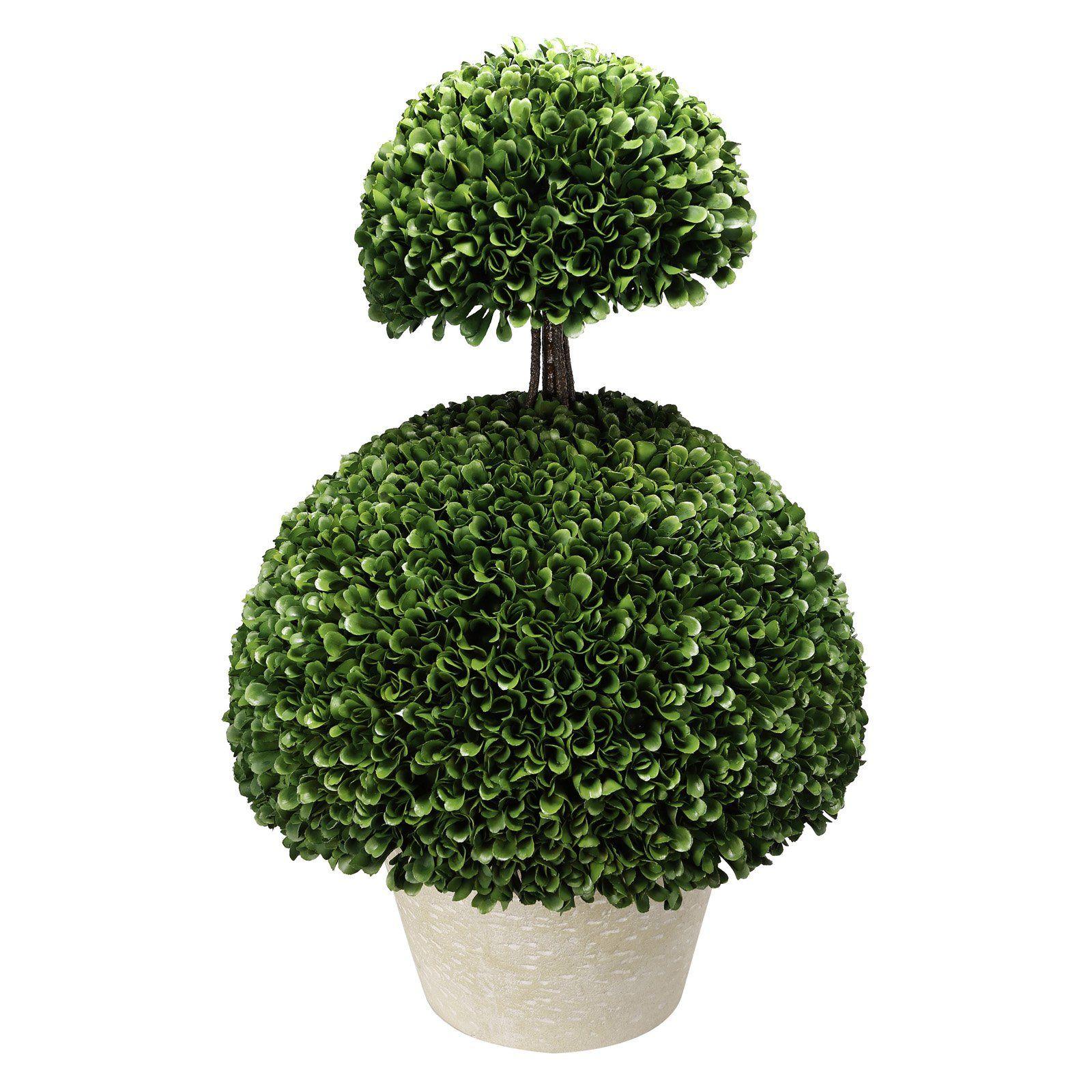A B Home Double Semi Circle Boxwood Topiary Boxwood Topiary