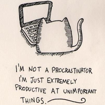 I'm not a procrastinator. I'm just extremely productive at unimportant things...