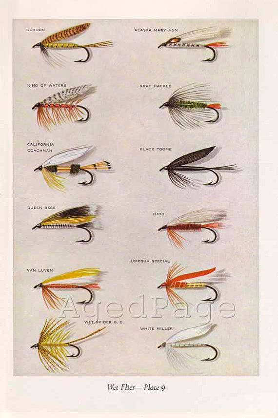 Pretty Cool Fly Fishing Flies Trout Fly Fishing Art Fly Fishing Tips