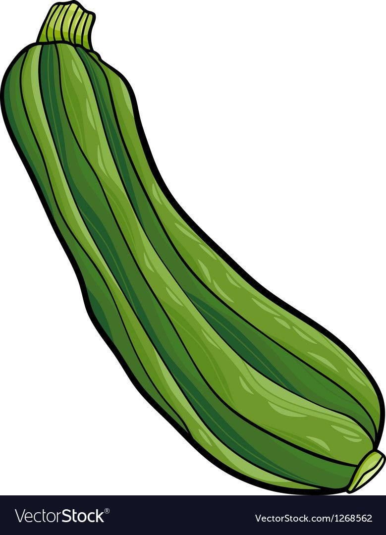 Cartoon Illustration Of Zucchini Vegetable Food Object Download A Free Preview Or High Quality Adobe Vegetable Cartoon Zucchini Vegetable Cartoon Illustration