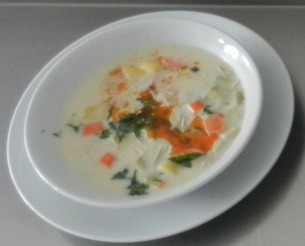 vegetable soup with turkey