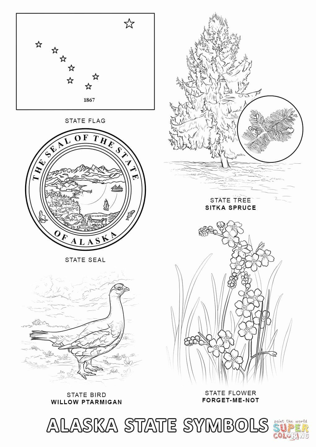 Alaska State Flower Coloring Page Youngandtae Com Flag Coloring Pages Bird Coloring Pages Coloring Pages