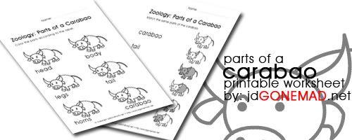 Parts Of A Carabao Worksheet