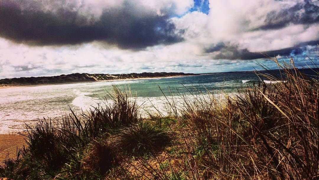 Come on take a walk...take a walk with me.............#wanderer#followme#oceantherapy#ocean#skyporn#clouds#blue#sea#sanddunes#scrub#bush#weekend#weekendwanderer#nature#wildandfree#natural#freedom#beach #treadlightly#pointimpossible#torquay#greatoceanroad#home#gratefull...... by dillidallidayz