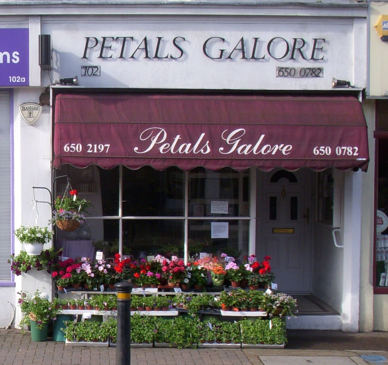 Petals Galore Flower Shop Front Springtime Flower Shop Kids Meal Plan Picky Eater Recipes