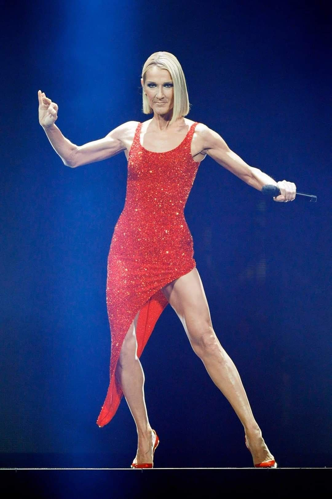 Pin by HML Space on Céline Dion in 2020 Celine dion