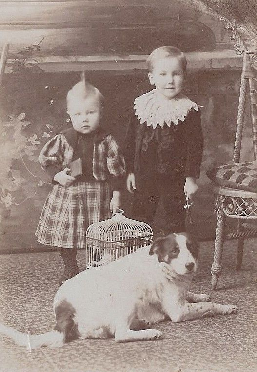 Great cabinet photo sister brother fashion dog bird cage Owen Sound, Ont. Canada