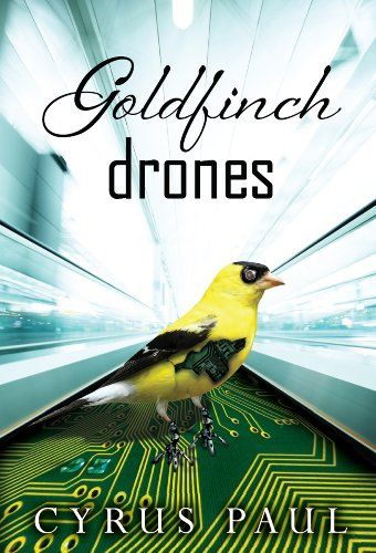 Goldfinch Drones This Book Is Free On Amazon As Of