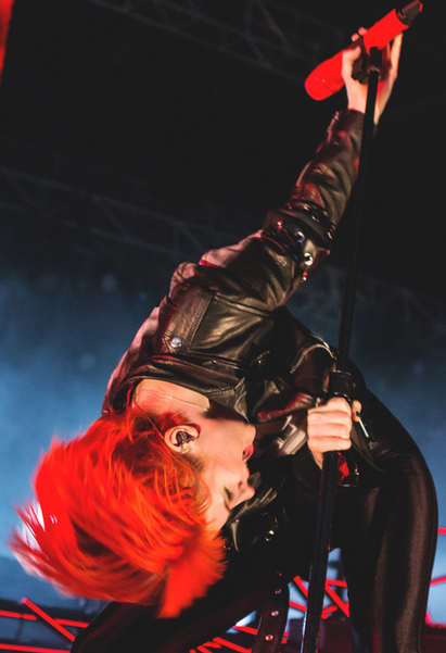 Hayley Williams of Paramore - Hayley Williams Butt Board.