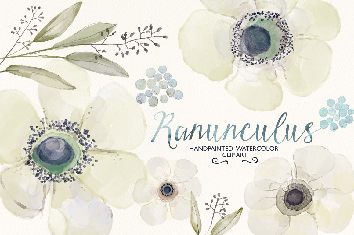Welcome to GrafikBoutique! This listing consists of 15 watercolor Ranunculus flower and other floral details. This set of high quality hand painted watercolor images can be used for: –