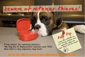Why do dogs eat retainers? And how to get a replacement.