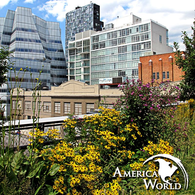 Il profumo di primavera sboccia tra i binari della ferrovia del West Side a #NewYork, riconvertita nel moderno parco metropolitano della High Line. [Foto by Victoria Belanger via Flickr]