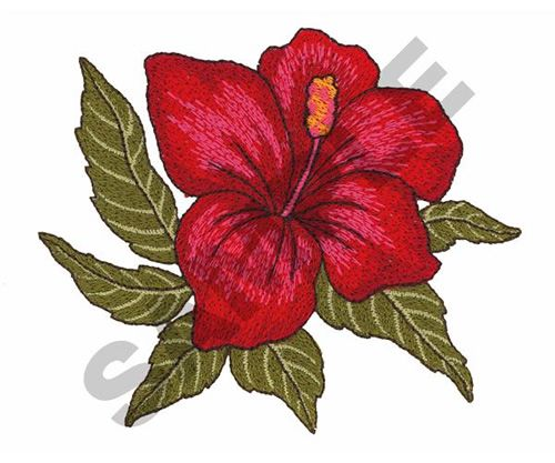 Hibiscus Embroidery Pattern 866 451 3900 Embroidery Designs Flower Embroidery Designs Embroidery Flowers