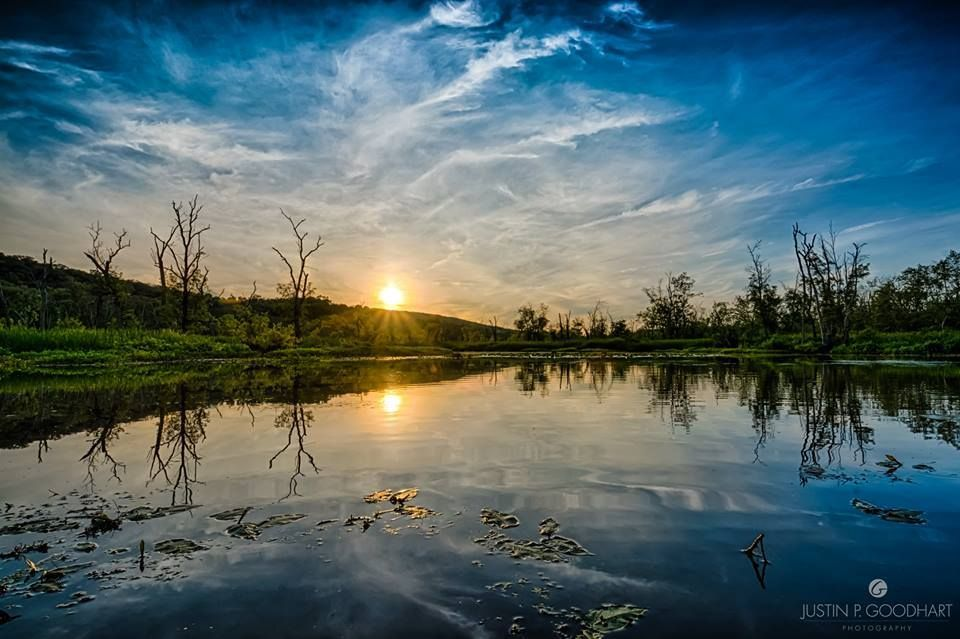 Pic of the Day...#GreatSwampWatershed, Patterson NY by Justin P. Goodhart Photography.  #hudsonvalley