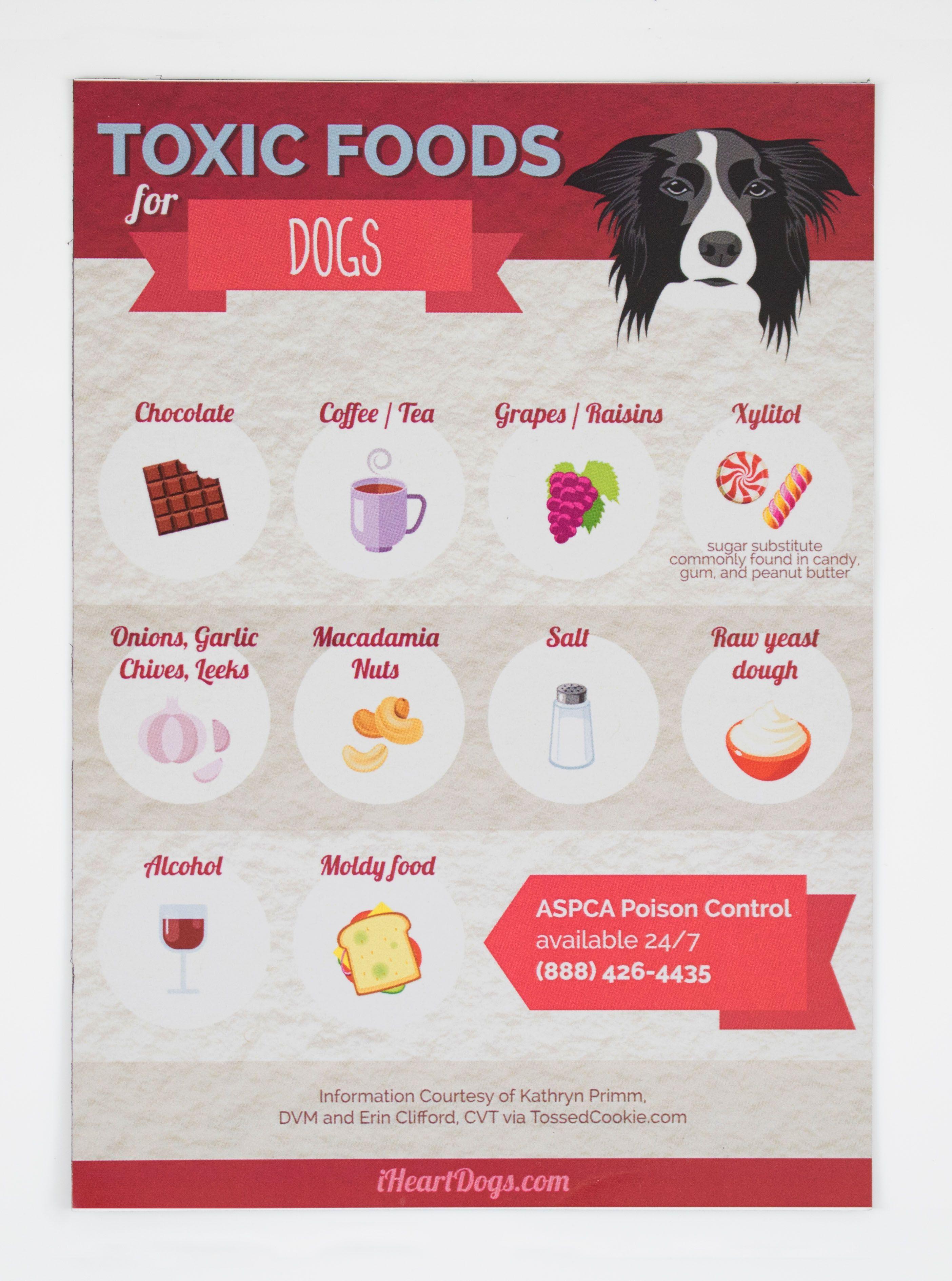 Toxic Dog Foods Refrigerator Magnet Dog Food Recipes Toxic