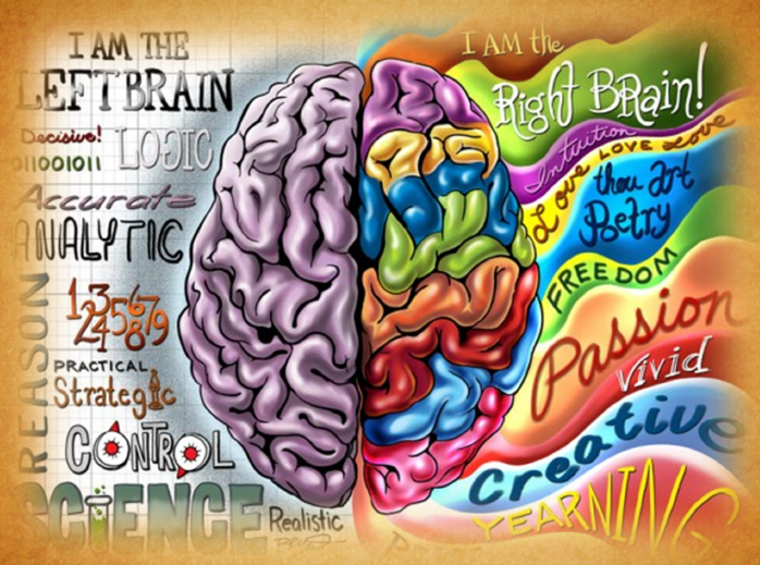 Left vs. right brain traits. This is a very broad look at the different personality traits of students.