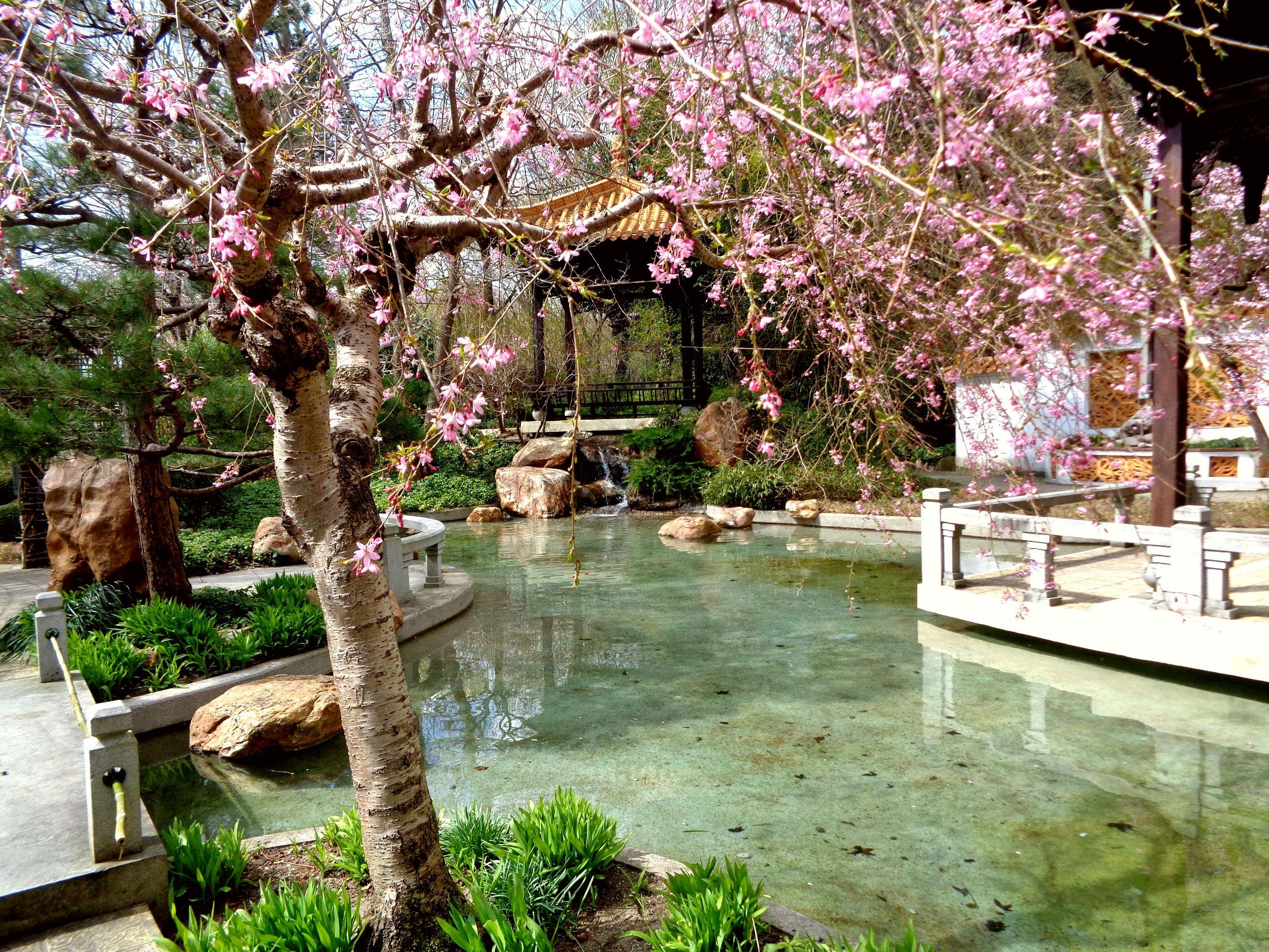chinese garden westpark munich pinterest m nchen. Black Bedroom Furniture Sets. Home Design Ideas
