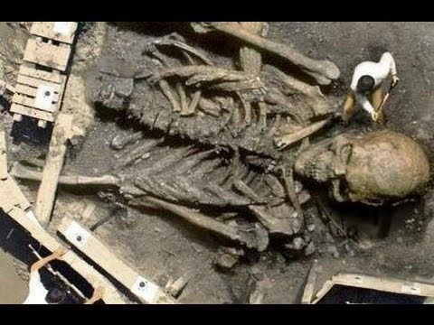 giant human skeleton discovered | early man | pinterest | hercules, Skeleton
