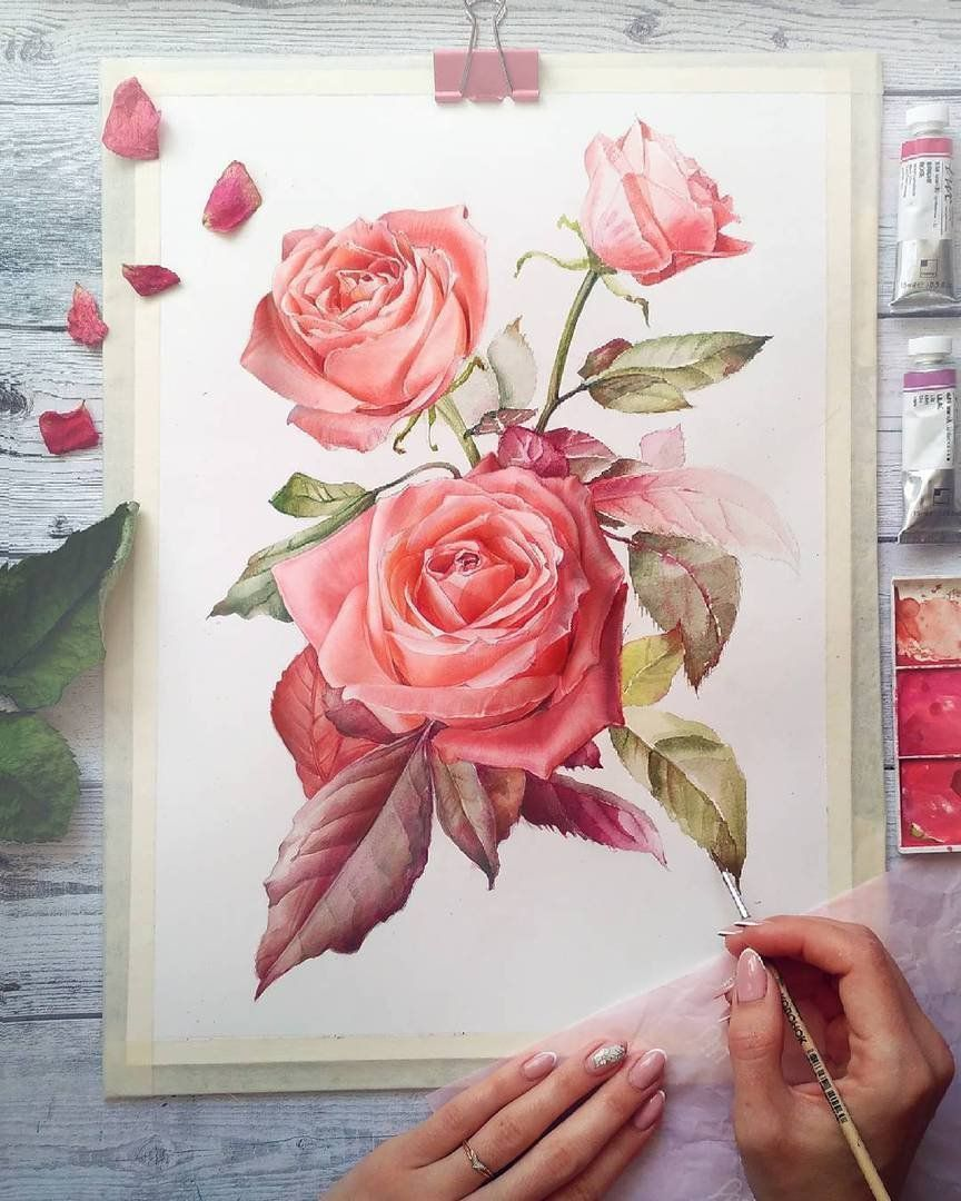 Pinterest Lifeingray Drawings Aquarell Blumen Aquarell Und