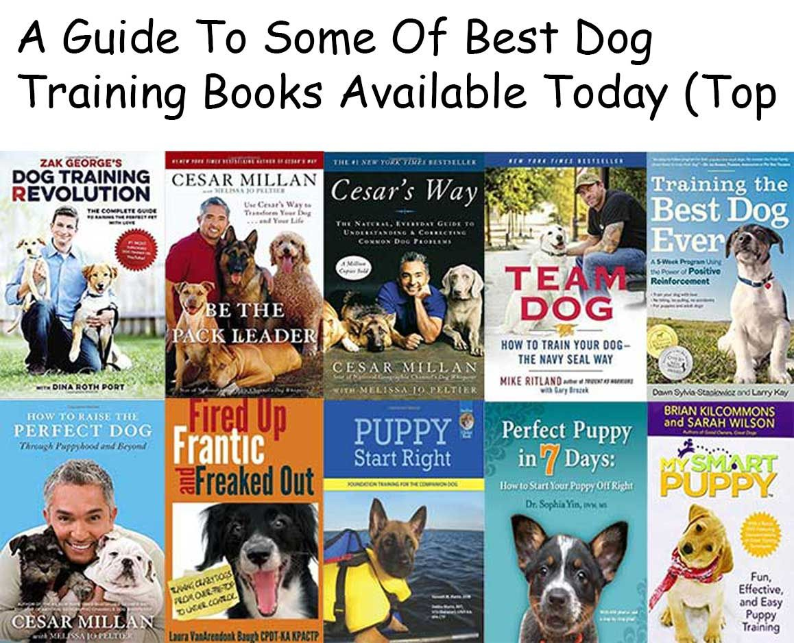 A Guide To Some Of Best Dog Training Books Available Today Top 24