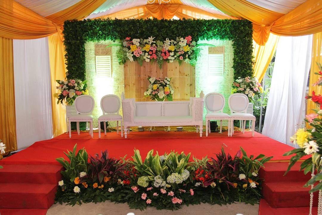Dekorasi pelaminan pernikahan di rumah terbaru konsep modern elegan dekorasi pelaminan pernikahan di rumah terbaru konsep modern elegan junglespirit Image collections