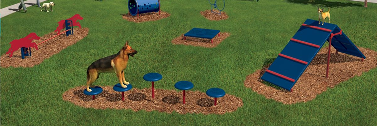 Outside Dog Playground Agility Course Phoenix Remy Need Some