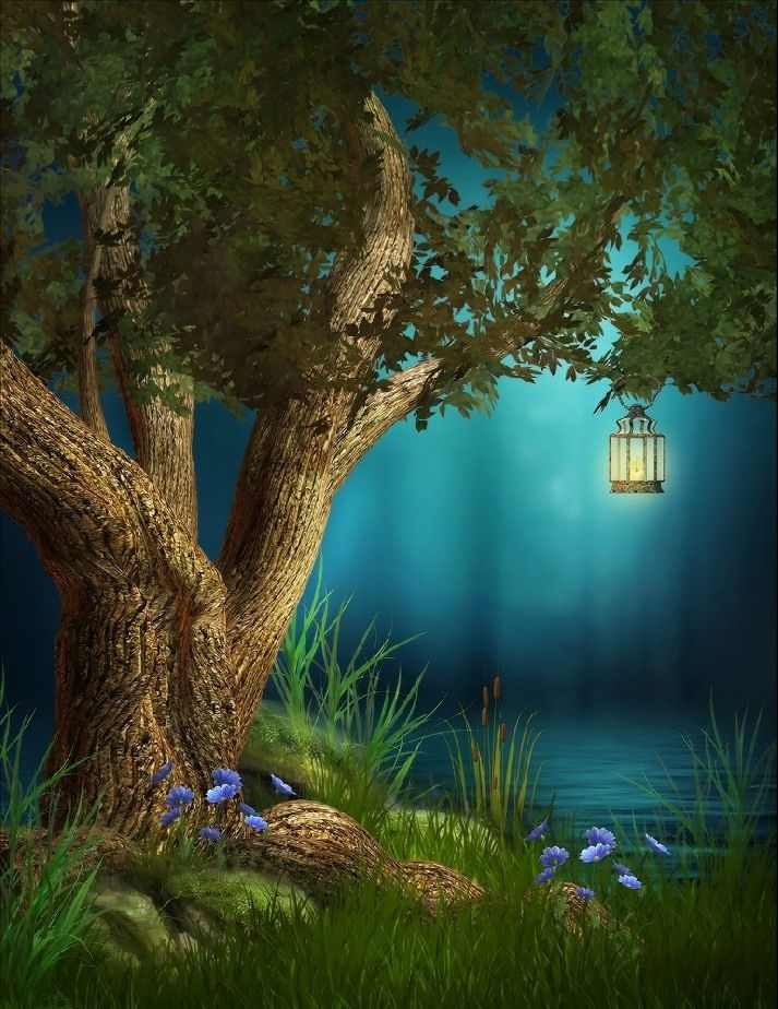 Сказочный лес картинки для телефона