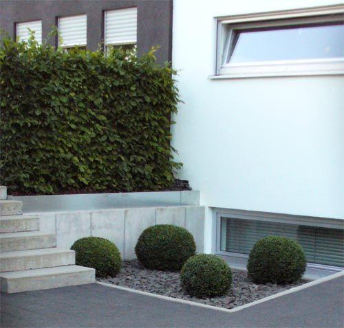 buchsbaum-steingartenjpg 500×478 pixels Droom huis Pinterest