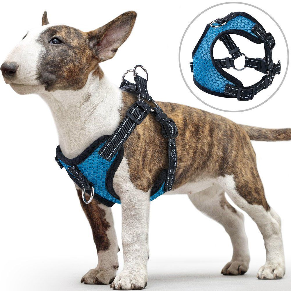 Front Clip Dog Harness For Small Dog Petbaba Reflective Soft Mesh