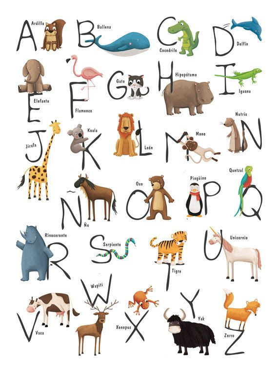 Abecedario Con Animales En Espanol Animal Alphabet Spanish Animals Spanish Alphabet