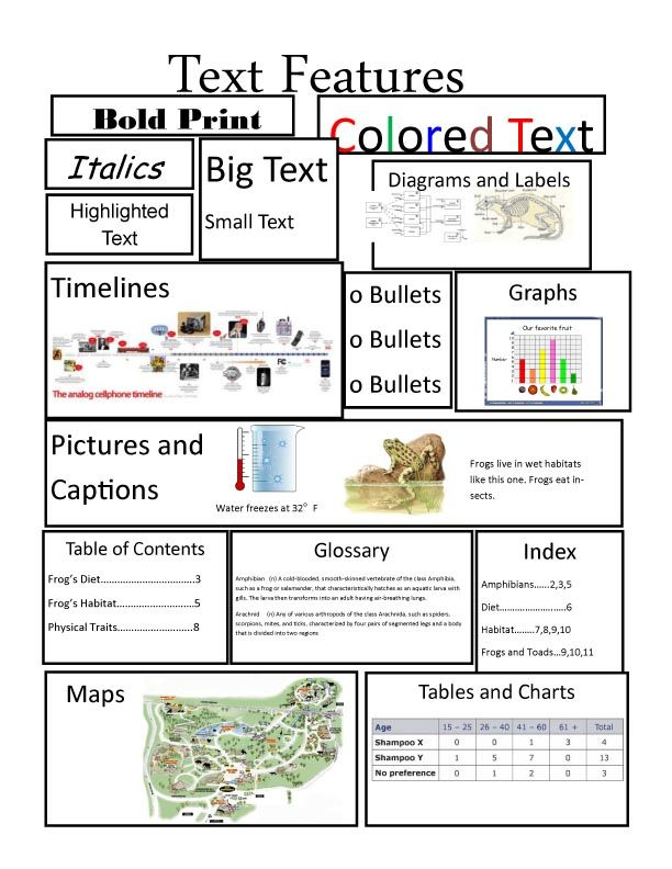 Text Features Worksheet Middle School
