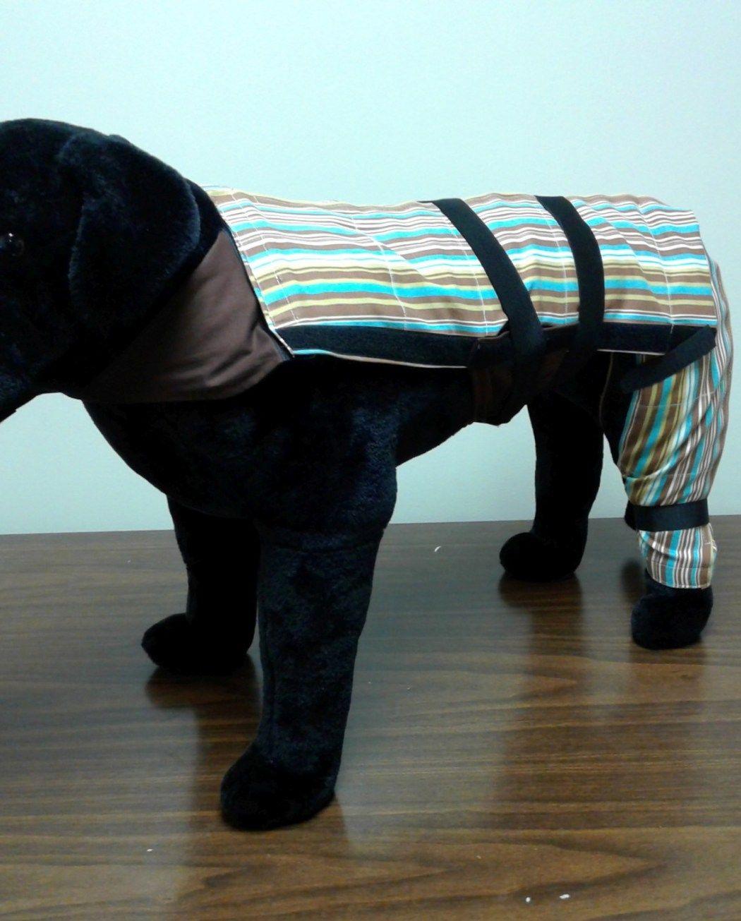 Cooling Heating Dog Vest Dog Vest Dogs Dog Lovers