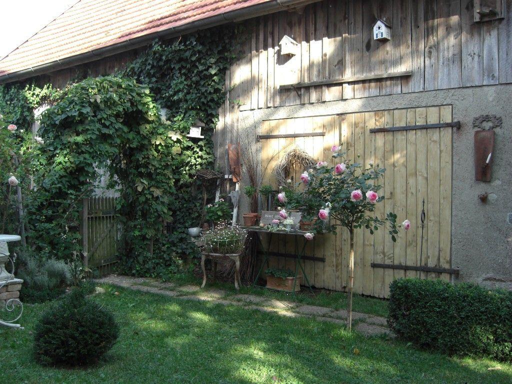 Meine eden rose wohnen und garten foto garden potting sheds green houses pinterest - Wohnen und garten foto ...