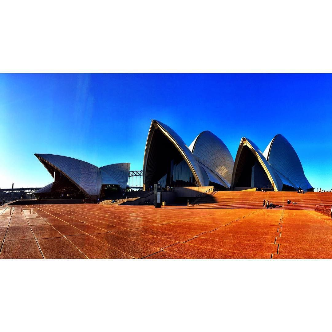 Beg For It   _____ #sydney #syd #sydneyharbour #sydneycommunity #sydneyharbourbridge #igsydney #igersydney #igers #aussie #aussies #australia #australie #australian #igaustralia #igeraustralia #sydneyoperahouse #operahouse #martinplace #gday #beautiful #picoftheday #likeforlike #like4like #likeforlike #likes4likes #followme by haft0n http://ift.tt/1NRMbNv