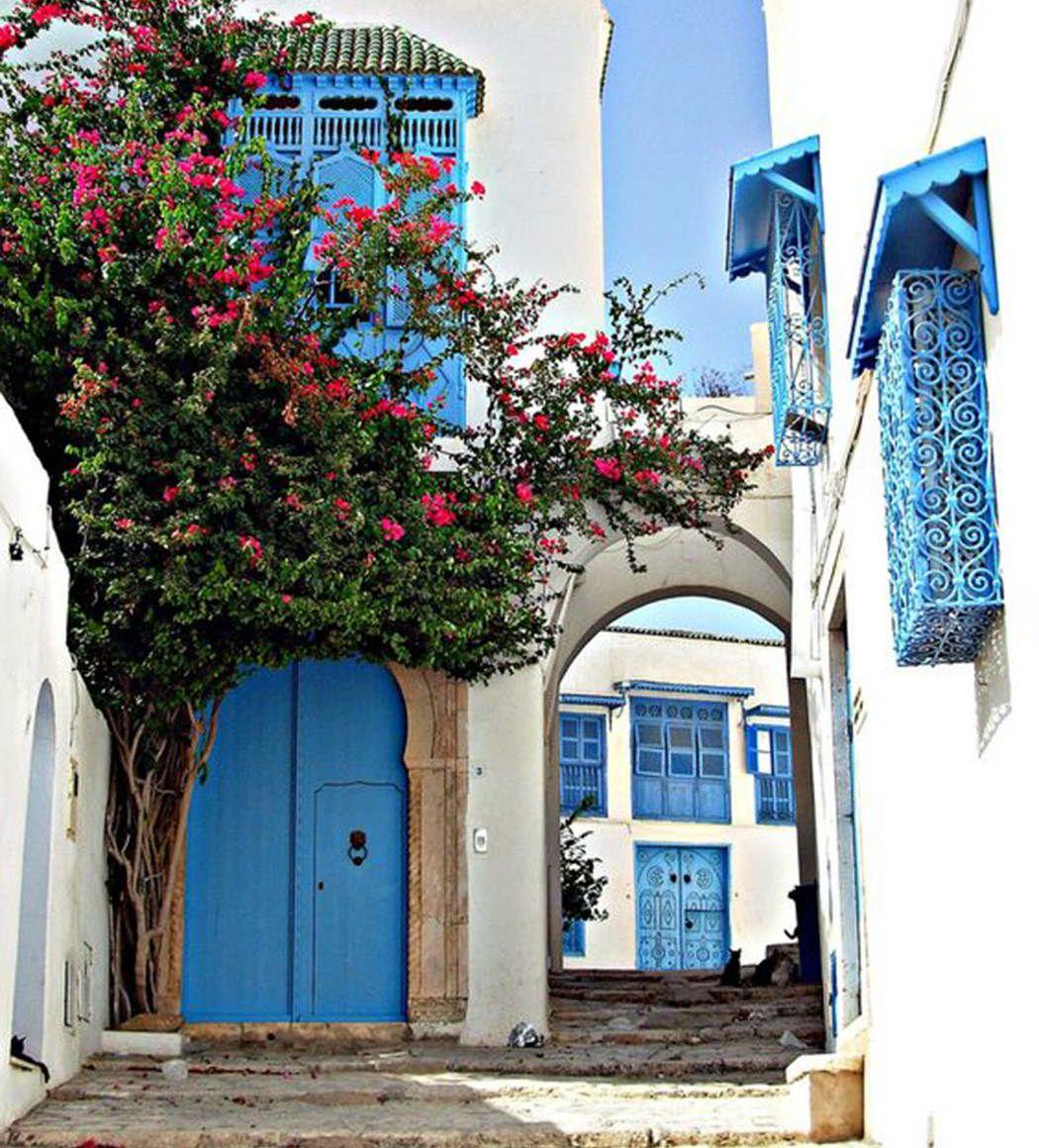 Viaje A Sidi Bou Said Ventas En Westwing Túnez Viajes Fachada De Casa