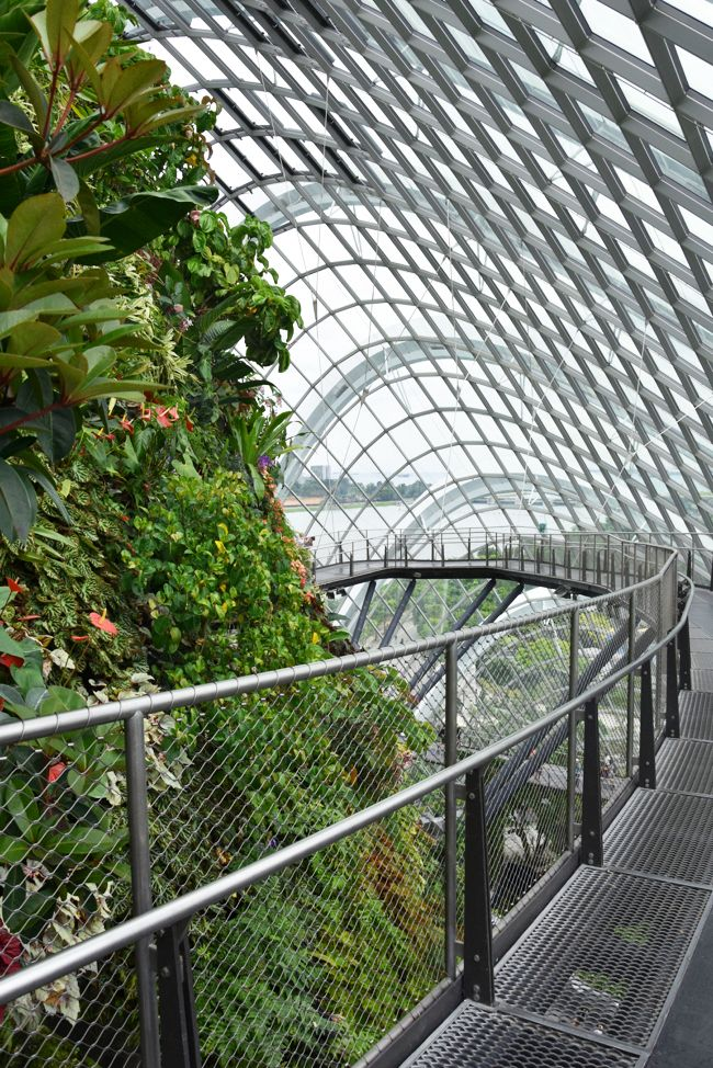 singapour gardens by the bay