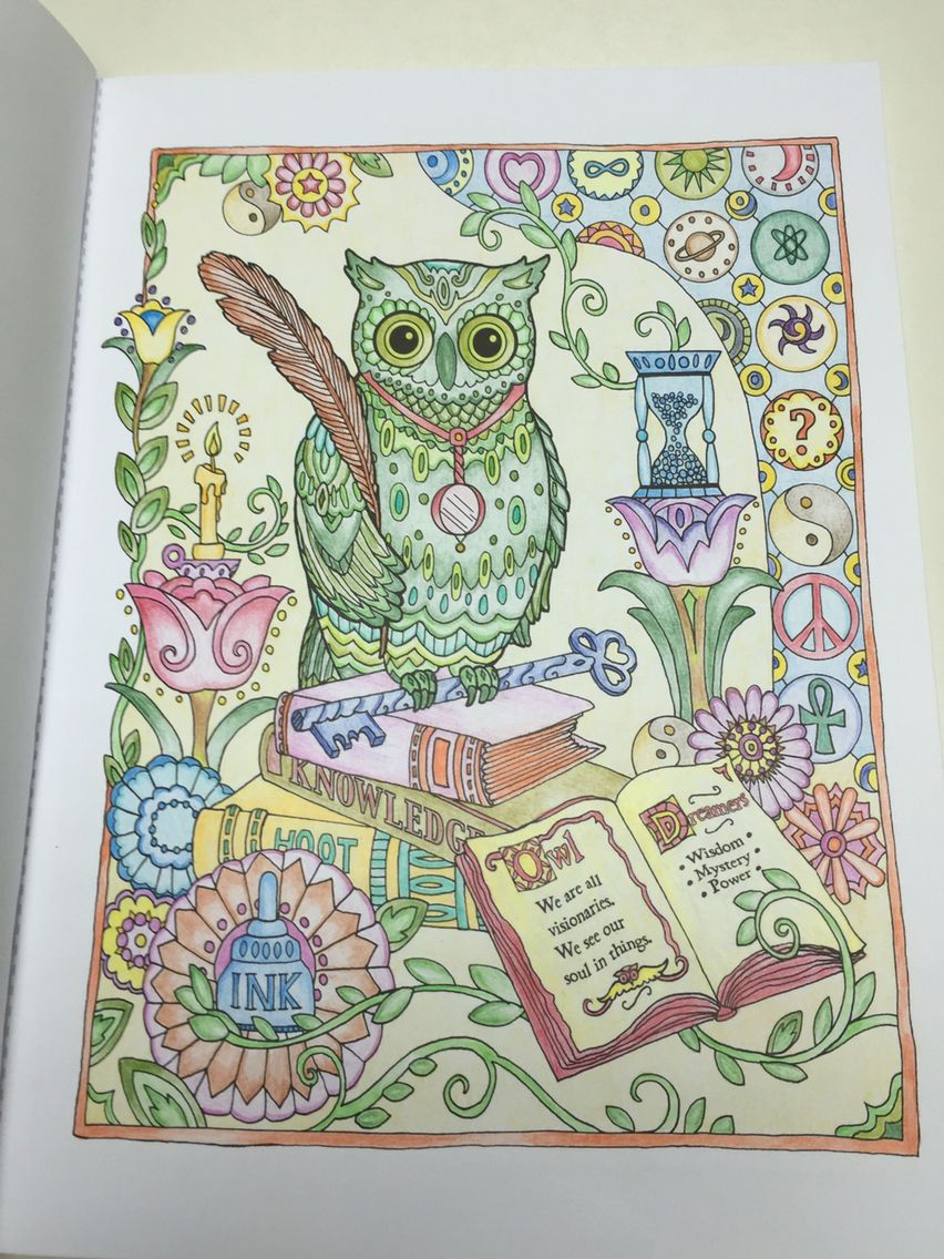 creative haven owls 4 colouring for relaxation owls