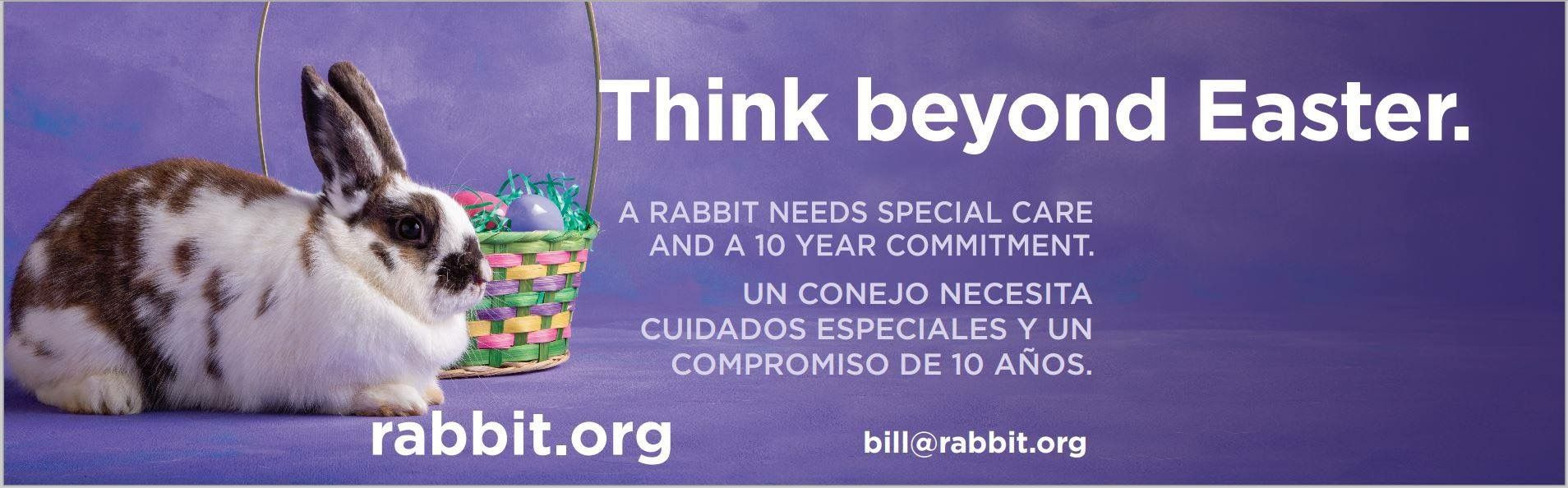 Rabbitron Easter campaign (with partial Spanish
