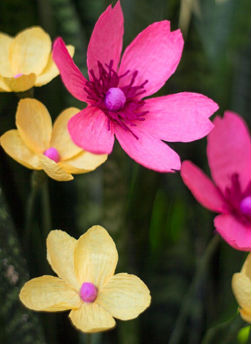 Hot pink cutie paper wildflowers paper flowers pinterest diy hot pink cutie paper wildflowers mightylinksfo