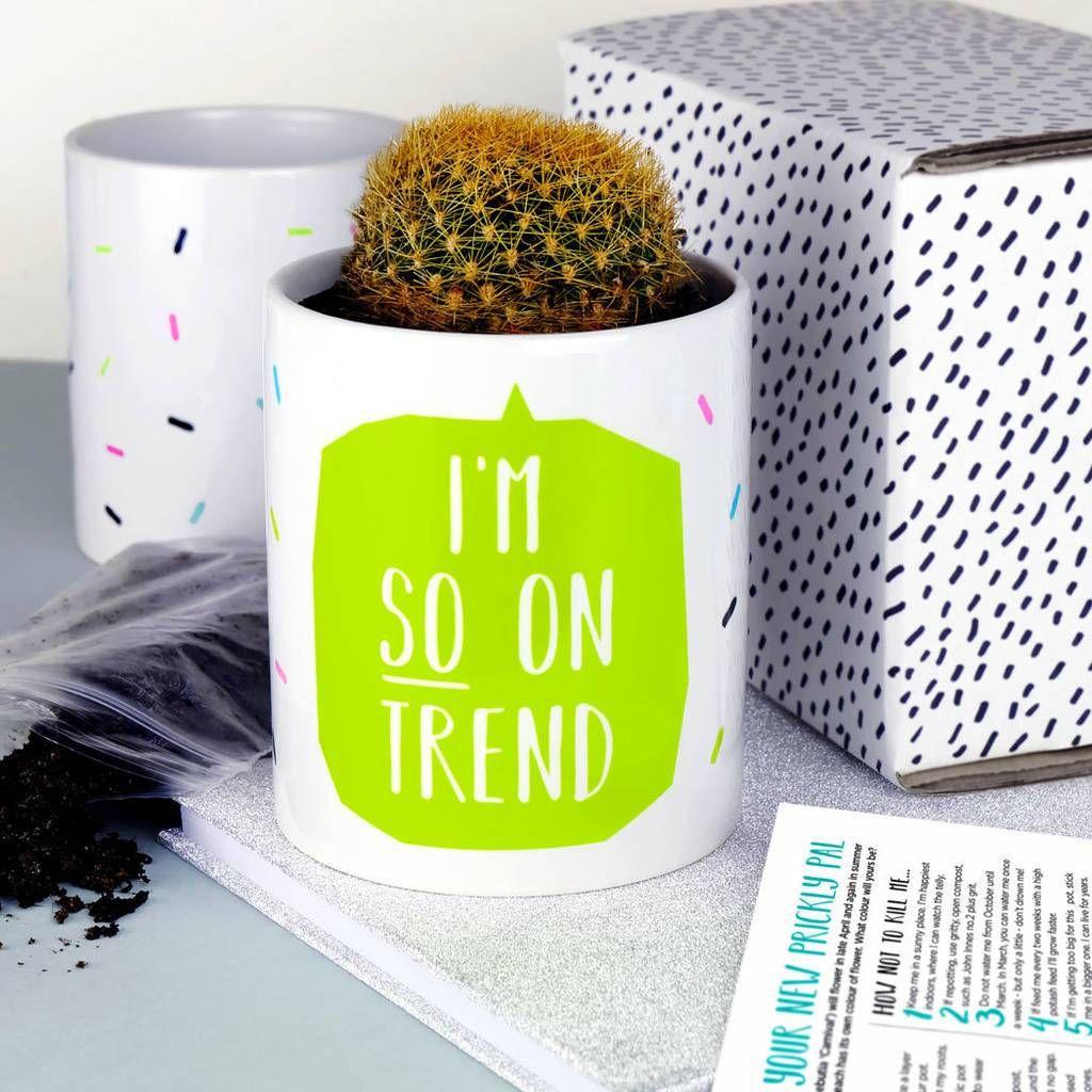 How not to kill a cactus Cactus plant pots, Ceramic