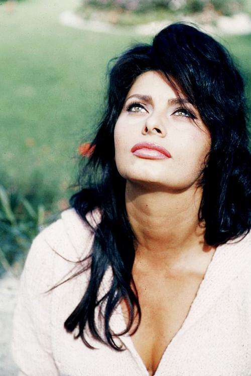 hair - Sophia Loren Hair Color