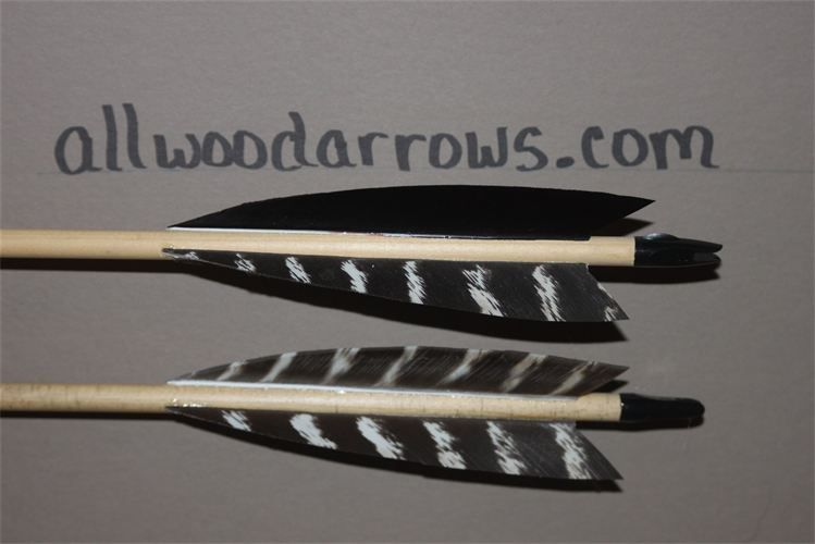 """5"""" Traditional Black Natural Barred Wild Turkey Feathers"""