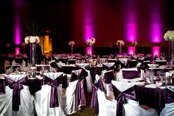 Reception Chair Covers And Lights