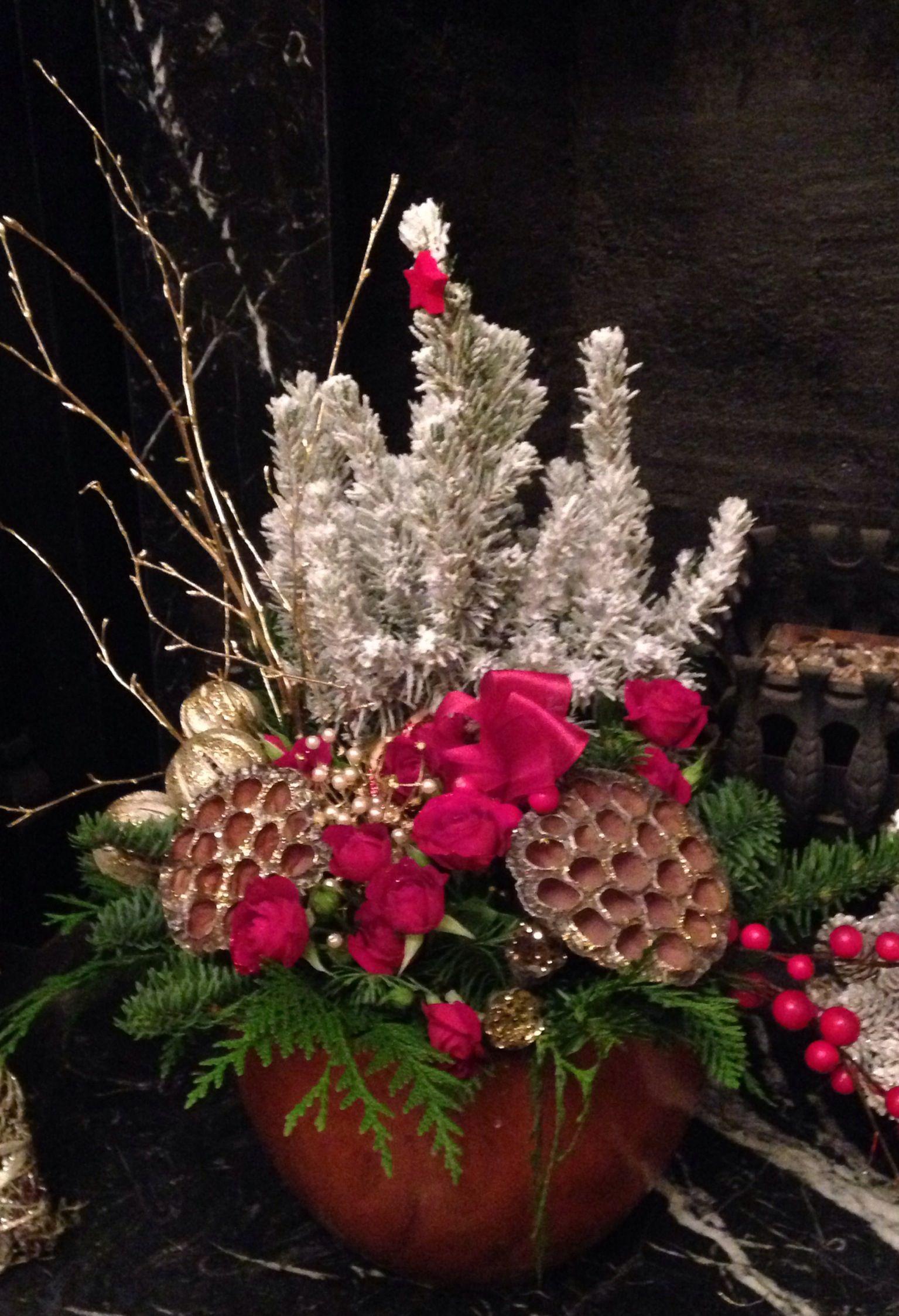 Christmas plant arrangement Christmas plants, Flower