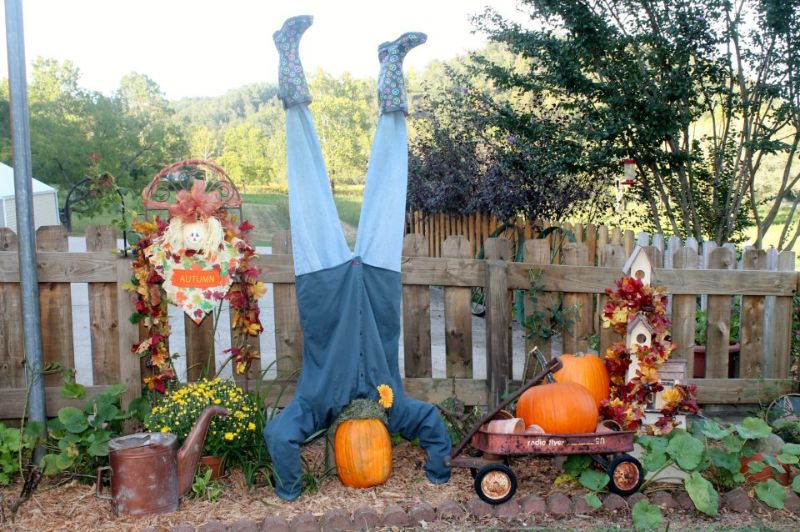 Silly Scarecrow
