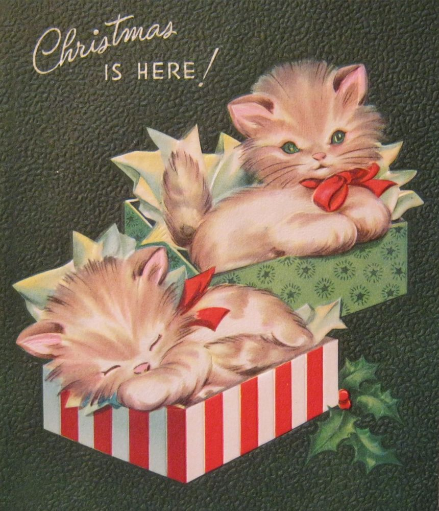 Vintage Christmas Card Kittens In Gift Boxes Cats Purr Fect Holiday Pollyanna Vintage Christmas Cards Vintage Christmas Vintage Christmas Images